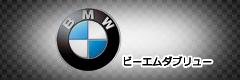 BMWのCYCカラーチェーン適合検索