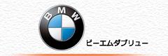 BMWのエボリューション適合検索