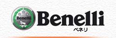 ベネリのエボリューション適合検索